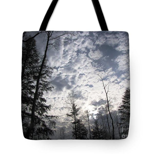 Tote Bag featuring the photograph The Devic Pool 3 by Melissa Stoudt