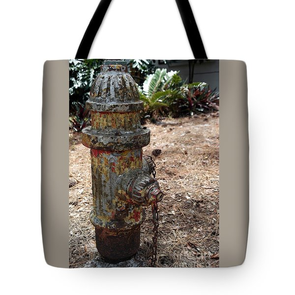 The Doggy Did It Tote Bag by Irma BACKELANT GALLERIES