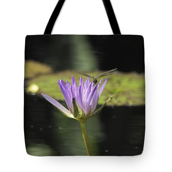 The Dragonfly And The Lily Tote Bag by Gary Dean Mercer Clark