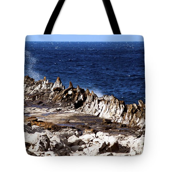 The Dragons Teeth II Tote Bag by Patricia Griffin Brett