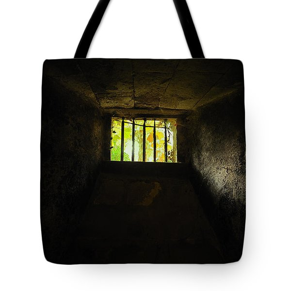 The Dungeon Tote Bag
