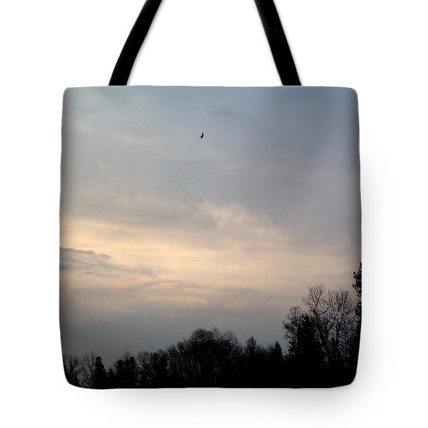 Tote Bag featuring the photograph The Eagle Has Flown by Kent Lorentzen