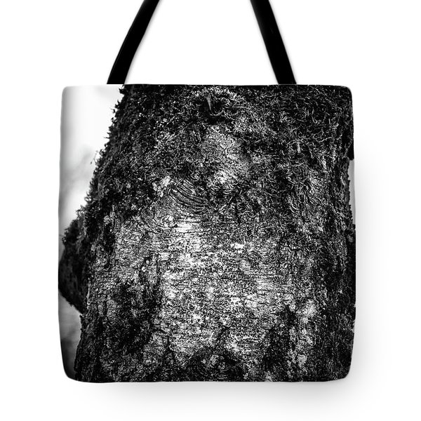 The Eagle In The Tree Tote Bag