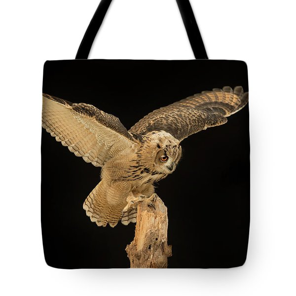 The Eagle-owl Has Landed Tote Bag