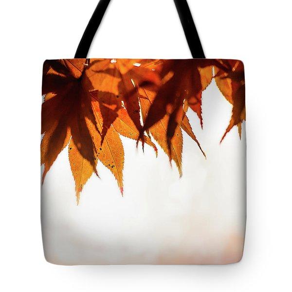 The Eaves Of Season Tote Bag