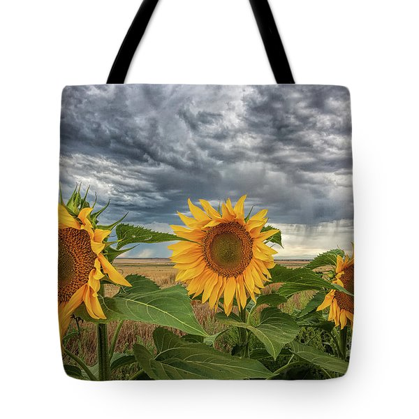 The Edge Of The Storm Tote Bag