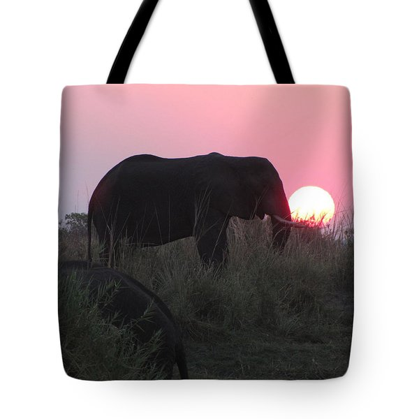 The Elephant And The Sun Tote Bag