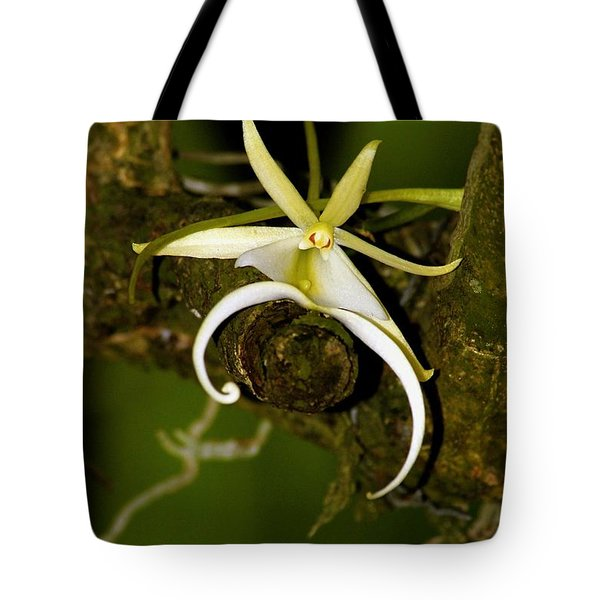 The Elusive And Rare Ghost Orchid Tote Bag