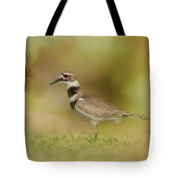 The Elusive Killdeer Tote Bag