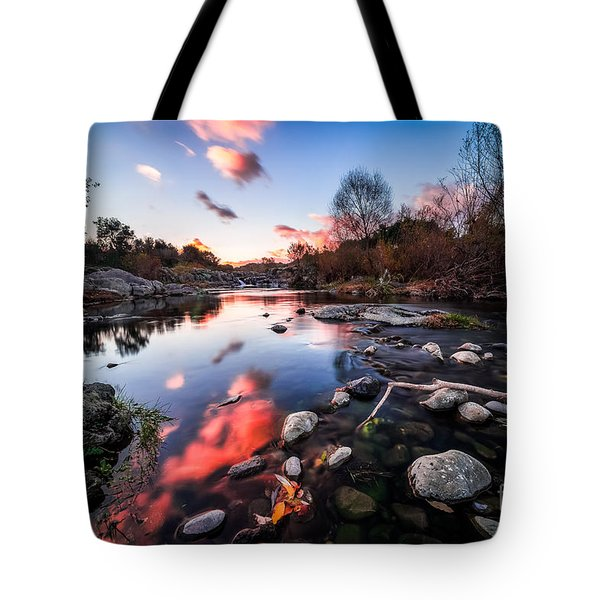 The End Of Autumn Tote Bag