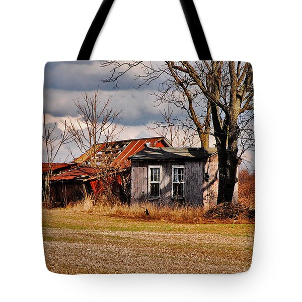 The End Of Days Tote Bag by Lois Bryan