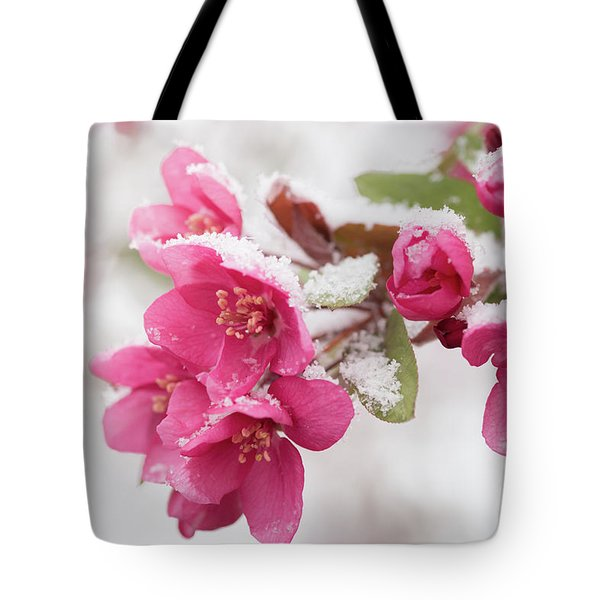 Tote Bag featuring the photograph The End Of Winter by Ana V Ramirez