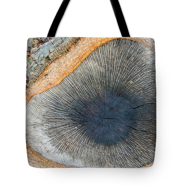 The Eye Of The Tree Tote Bag