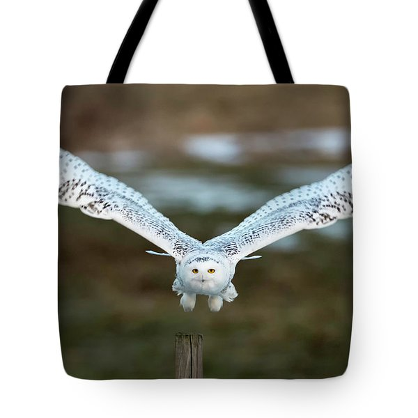 The Eyes Of Intent Tote Bag