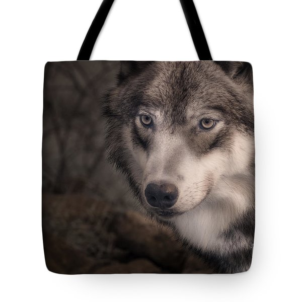 The Face Of Teton Tote Bag