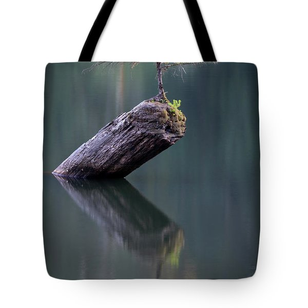 The Fairy Tree Tote Bag