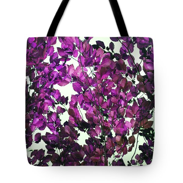 Tote Bag featuring the photograph The Fall - Intense Fuchsia by Rebecca Harman