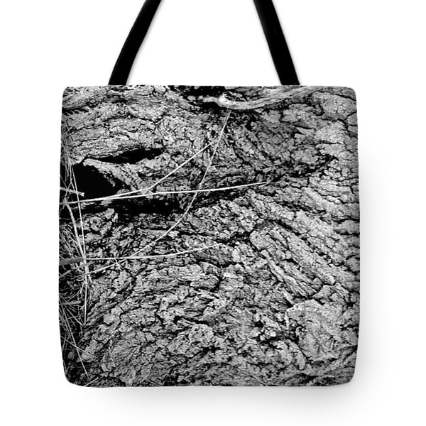 The Fallen - Dragon Eye Tote Bag
