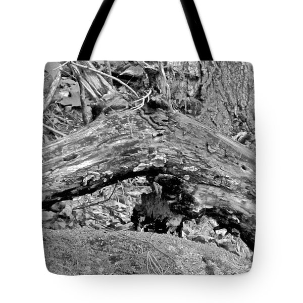 The Fallen - Dragon Tote Bag