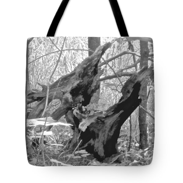The Fallen - Dragon Skull Tote Bag