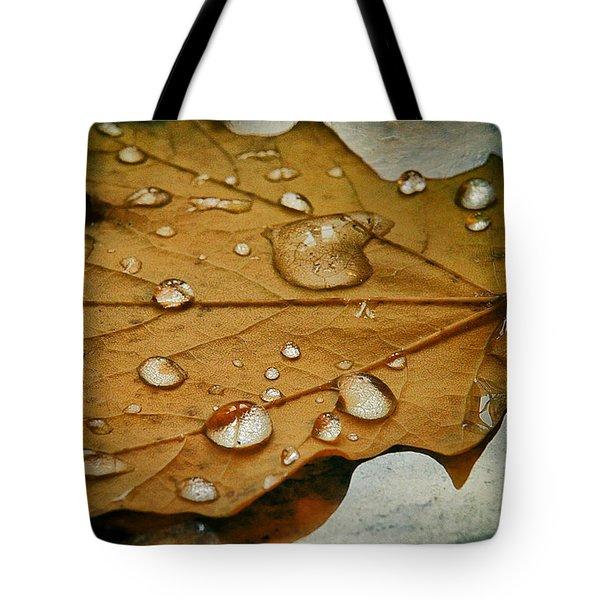 The Fallen Leaf Tote Bag
