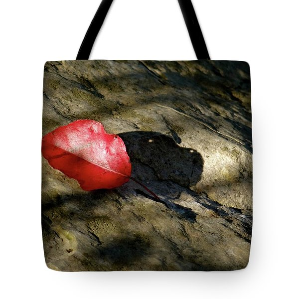 The Fallen Leaf Tote Bag