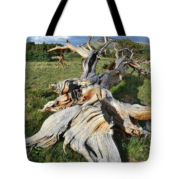 The Fallen One Tote Bag