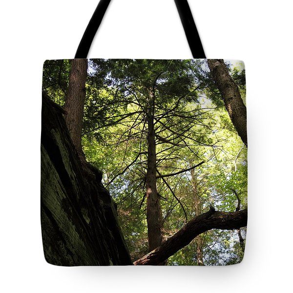 The Fallen Triangle Tote Bag by Amanda Barcon