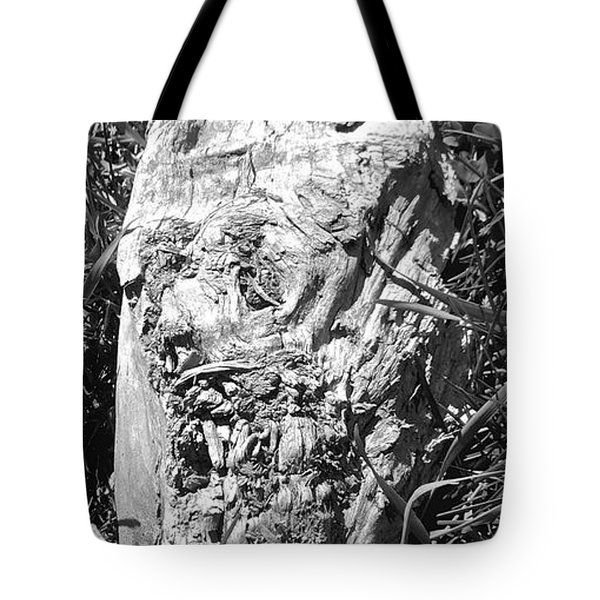 The Fallen - Unhidden Door Tote Bag