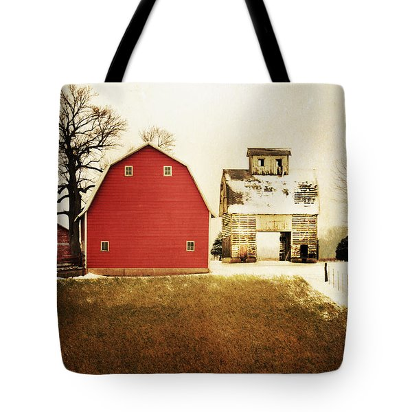 Tote Bag featuring the photograph The Favorite by Julie Hamilton