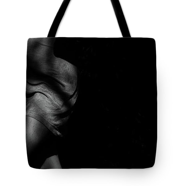 Tote Bag featuring the photograph The Feminine 2 by Catherine Sobredo