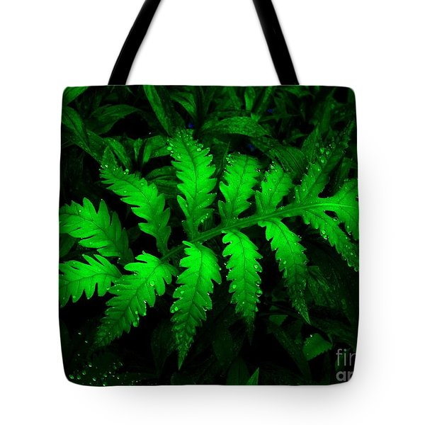 Tote Bag featuring the photograph The Fern by Elfriede Fulda