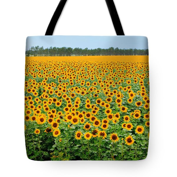 The Field Of Suns Tote Bag