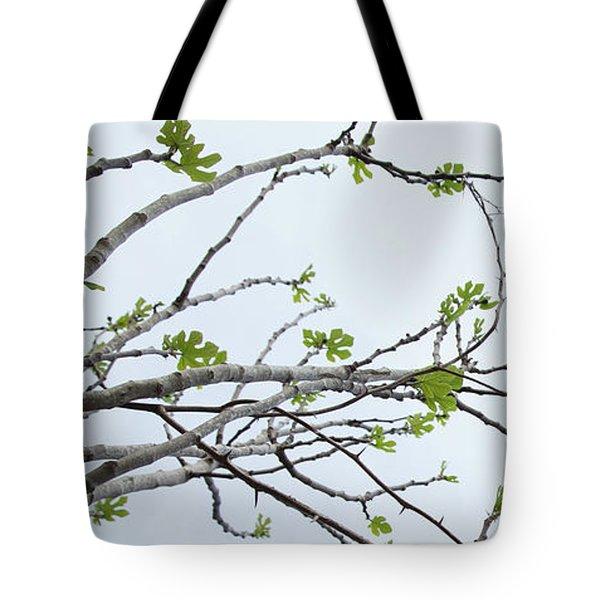 The Fig Tree Budding Tote Bag by Yoel Koskas