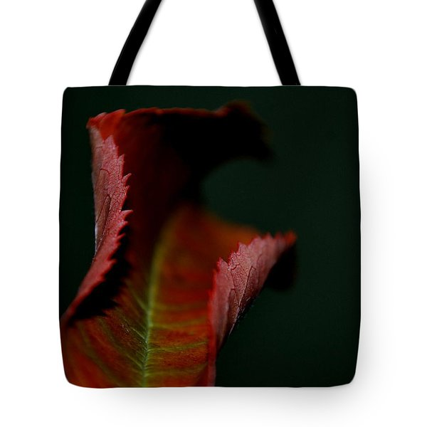 Tote Bag featuring the photograph The First Day Of Fall by Marija Djedovic