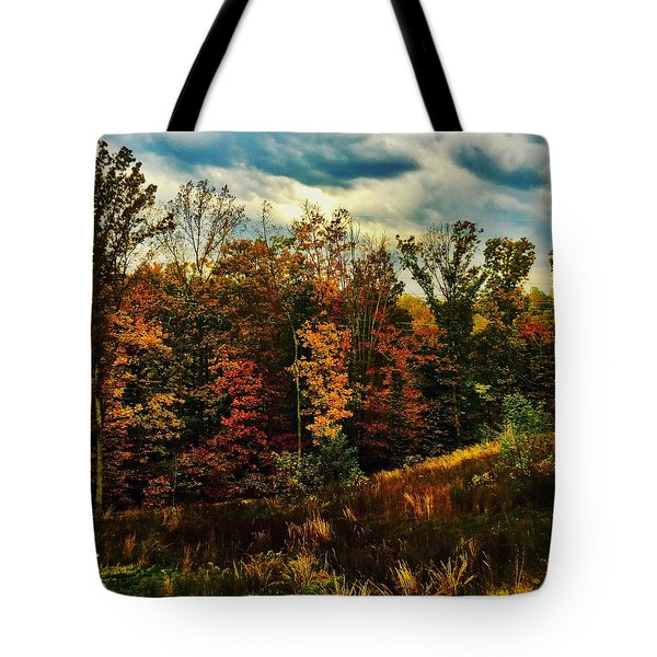 The First Days Of Fall Tote Bag