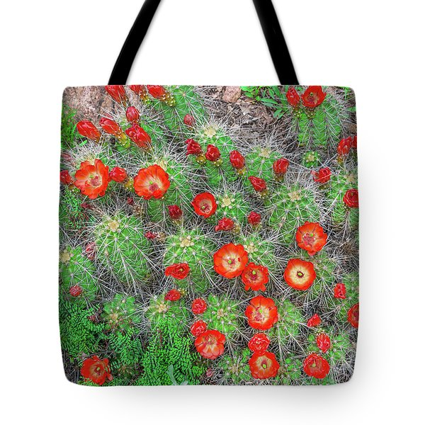 The First Week Of May, Claret Cup Cacti Begin To Bloom Throughout The Colorado Rockies.  Tote Bag