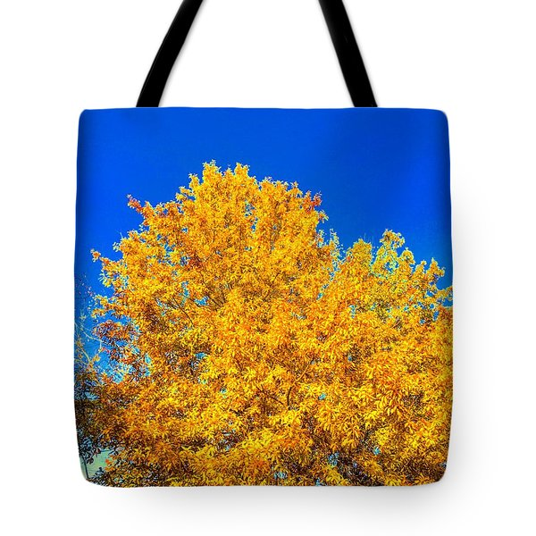 The Flare Of Fall On A Clear Day Tote Bag
