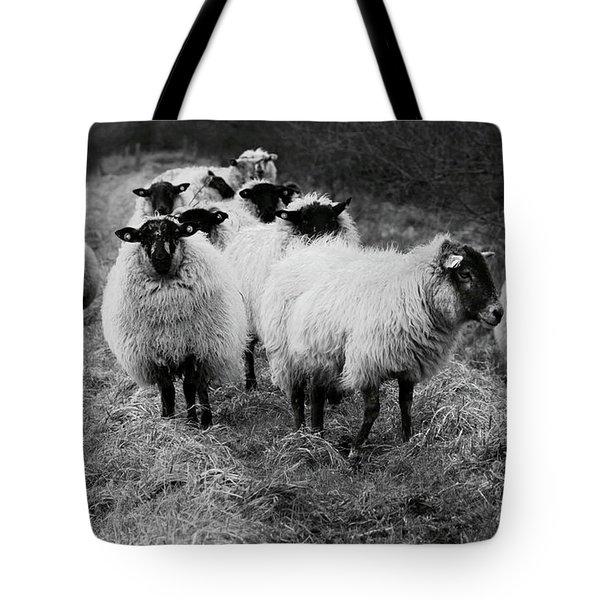 The Flock 1 Tote Bag