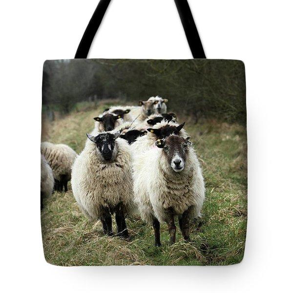 The Flock 2 Tote Bag
