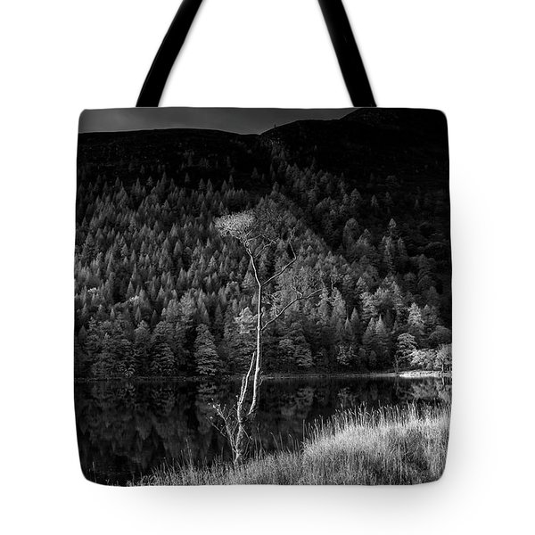 The Flute Player Tote Bag