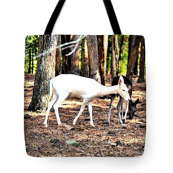 The Forest And The Deer Tote Bag