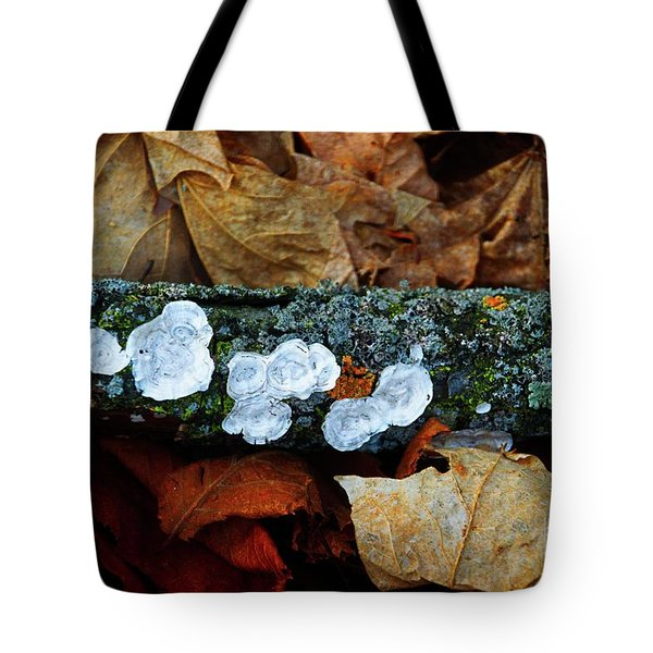 Tote Bag featuring the photograph The Forest Floor - Cascade Wi by Mary Machare