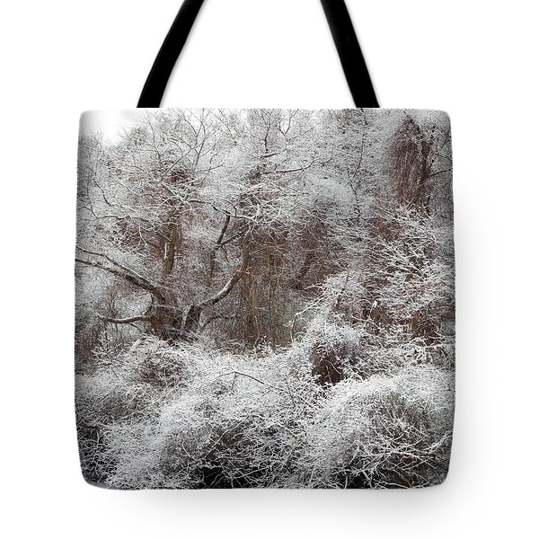 Tote Bag featuring the photograph The Forest Hush by Lynda Lehmann