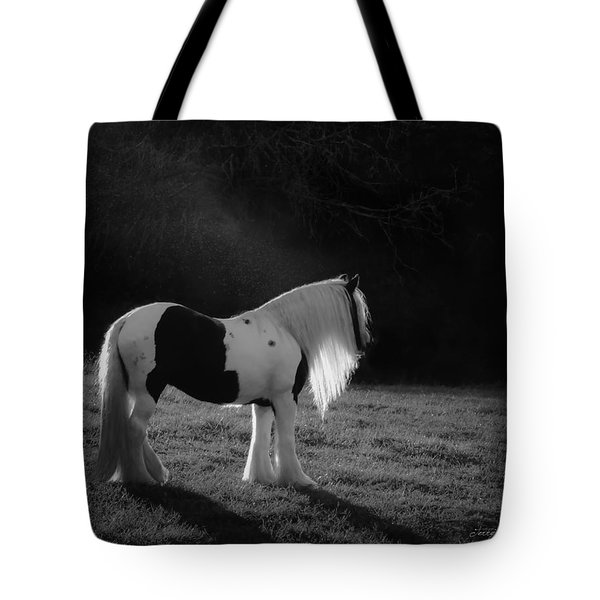 The Forest Moonlight Tote Bag
