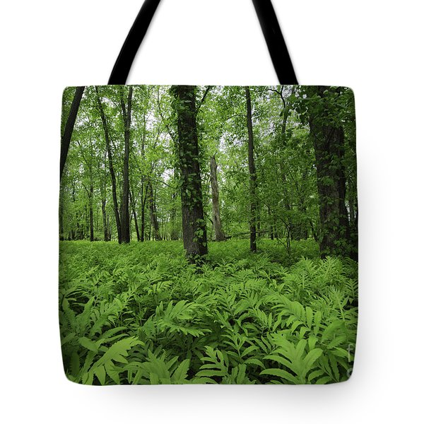 The Forest Of Ferns Tote Bag