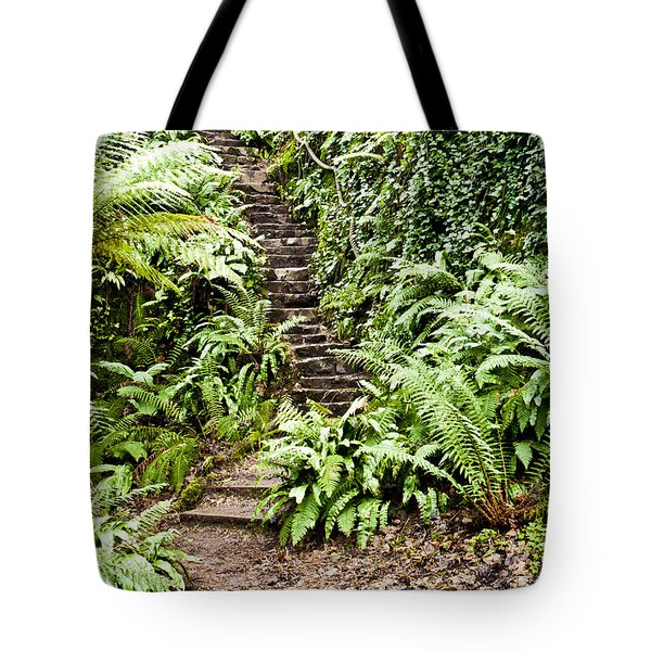The Forest Stairwell Tote Bag by Rae Tucker