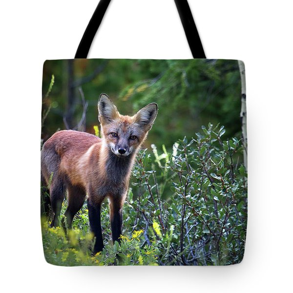 The Forest's Edge Tote Bag