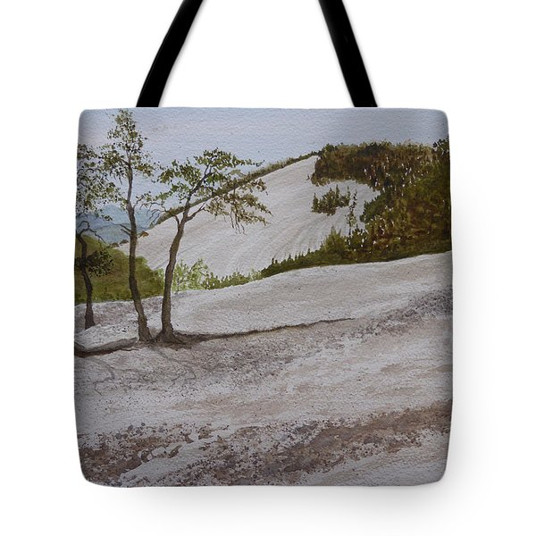 Tote Bag featuring the painting The Four Sisters At Stone Mountain by Joel Deutsch