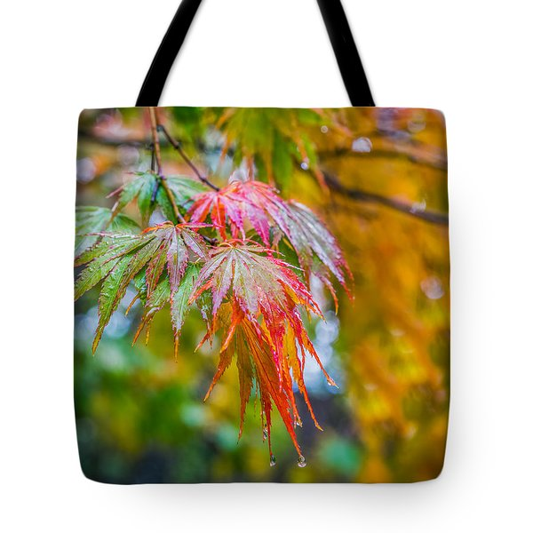 The Freshness Of Fall Tote Bag by Ken Stanback